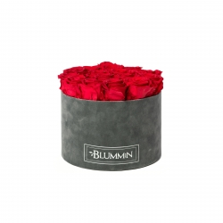 LARGE BLUMMIN DARK GREY VELVET BOX VIBRANT RED ROSES