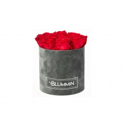 MEDIUM BLUMMIN DARK GREY VELVET BOX WITH VIBRANT RED ROSES