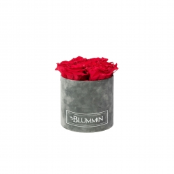 SMALL VELVET DARK GREY BOX WITH VIBRANT RED ROSES