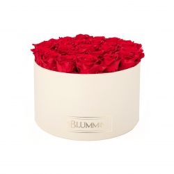 EXTRA LARGE BLUMMiN CREAM BOX WITH VIBRANT RED ROSES