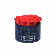LARGE  DARK BLUE VELVET BOX WITH VIBRANT RED ROSES