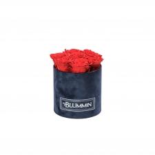 SMALL BLUMMIN DARK BLUE VELVET BOX WITH VIBRANT RED ROSES