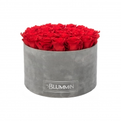 EXTRA LARGE BLUMMIN LIGHT GREY VELVET BOX WITH VIBRANT RED ROSES