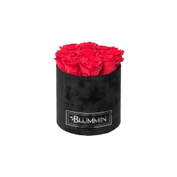 MEDIUM VELVET BLACK BOX WITH VIBRANT RED ROSES
