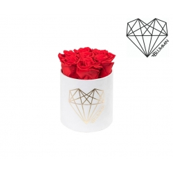 SMALL LOVE - WHITE VELVET BOX WITH VIBRANT RED ROSES