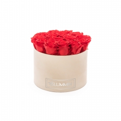 LARGE VELVET NUDE BOX WITH VIBRANT RED ROSES