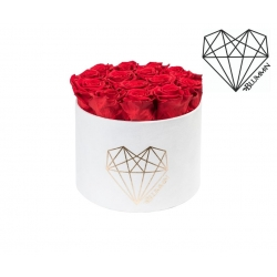 LARGE LOVE - WHITE VELVET BOX WITH VIBRANT RED ROSES