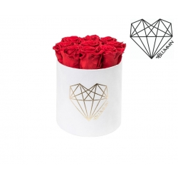 MEDIUM LOVE - WHITE VELVET BOX WITH VIBRANT RED ROSES