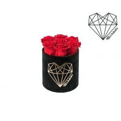 SMALL LOVE - BLACK VELVET BOX WITH VIBRANT RED ROSES