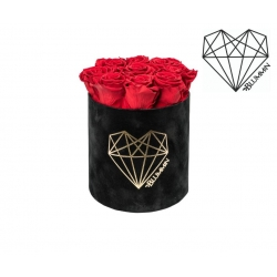 MEDIUM LOVE - BLACK VELVET BOX WITH VIBRANT RED ROSES