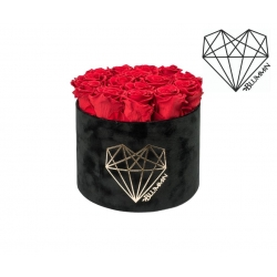 LARGE LOVE - BLACK VELVET BOX WITH VIBRANT RED ROSES