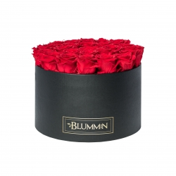 XL BLUMMiN - BLACK BOX WITH VIBRANT RED ROSES