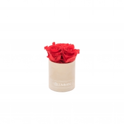 XS BLUMMiN - NUDE VELVET BOX WITH VIBRANT RED ROSES