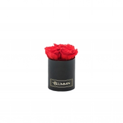 XS BLACK BOX WITH VIBRANT RED ROSES