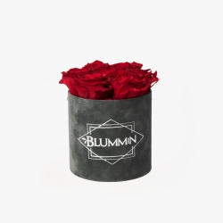 SMALL BLUMMiN DARK GREY VELVET BOX WITH VIBRANT RED ROSES