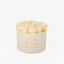 LARGE BLUMMiN - kreemikasvalge karp CHAMPAGNE roosidega