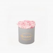 SMALL BLUMMiN - helehall karp BRIDAL PINK roosidega