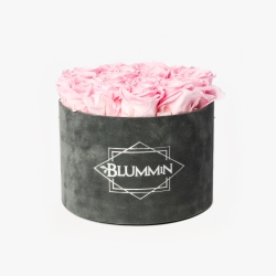 LARGE BLUMMIN DARK GREY VELVET BOX WITH BRIDAL PINK ROSES