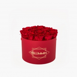 LARGE CLASSIC RED BOX WITH VIBRANT RED ROSES