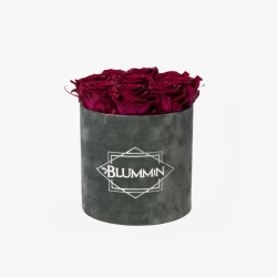 MEDIUM BLUMMiN - hall velvet karp CHERRY LADY roosidega
