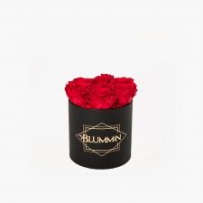 SMALL BLUMMiN - must karp VIBRANT RED roosidega