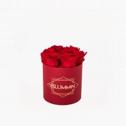SMALL CLASSIC RED BOX WITH VIBRANT RED ROSES