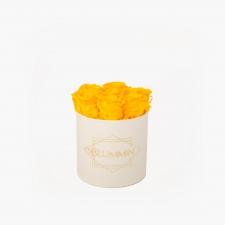 SMALL BLUMMiN - kreemikasvalge karp YELLOW roosidega