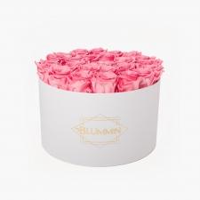 EXTRA LARGE BLUMMiN - valge karp BABY PINK roosidega