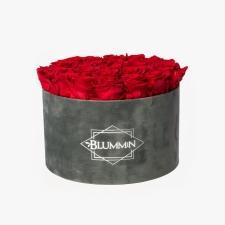 EXTRA LARGE BLUMMiN DARK GREY VELVET BOX WITH VIBRANT RED ROSES