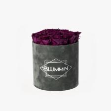 MEDIUM BLUMMiN - tumehall sametkarp PLUM roosidega