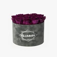 LARGE BLUMMiN - tumehall sametkarp VINTAGE PLUM roosidega