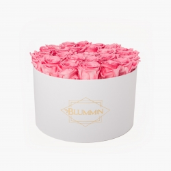 EXTRA LARGE CLASSIC WHITE BOX WITH BABY PINK ROSES