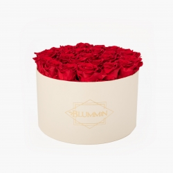 EXTRA LARGE CLASSIC CREAM BOX WITH VIBRANT RED ROSES