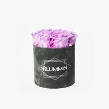 SMALL BLUMMiN - tumehall sametkarp BABY LILLY roosidega
