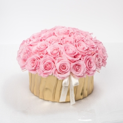 GOLDEN CERAMIC POT WITH 29-33 BRIDAL PINK ROSES