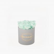 SMALL BLUMMiN - helehall karp MINT roosidega