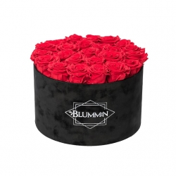 EXTRA LARGE VELVET BLACK BOX WITH VIBRANT RED ROSES