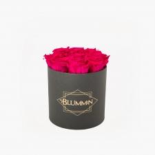 MEDIUM BLUMMiN - tumehall karp HOT PINK roosidega