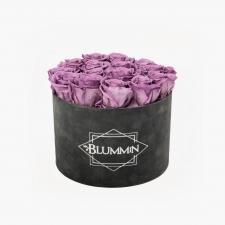 LARGE BLUMMiN - DARK GREY VELVET BOX WITH LILAC ROSES