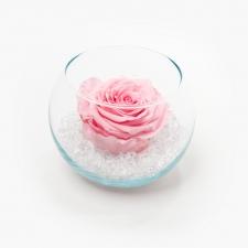 Klaasist vaas ümmargune Bridal Pink roosiga ja kristallidega
