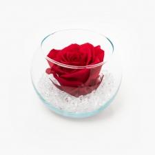 Klaasist vaas ümmargune Vibrant Red roosiga ja kristallidega