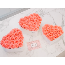 Südamekujuline lillekarp XXL valge karp BABY PINK roosidega (28-30 roosi)